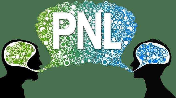La PNL, ou Programmation Neuro Linguistique, L'art de modéliser l'excellence !