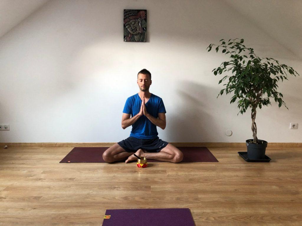 cours de yoga en ligne Terre Harmonie